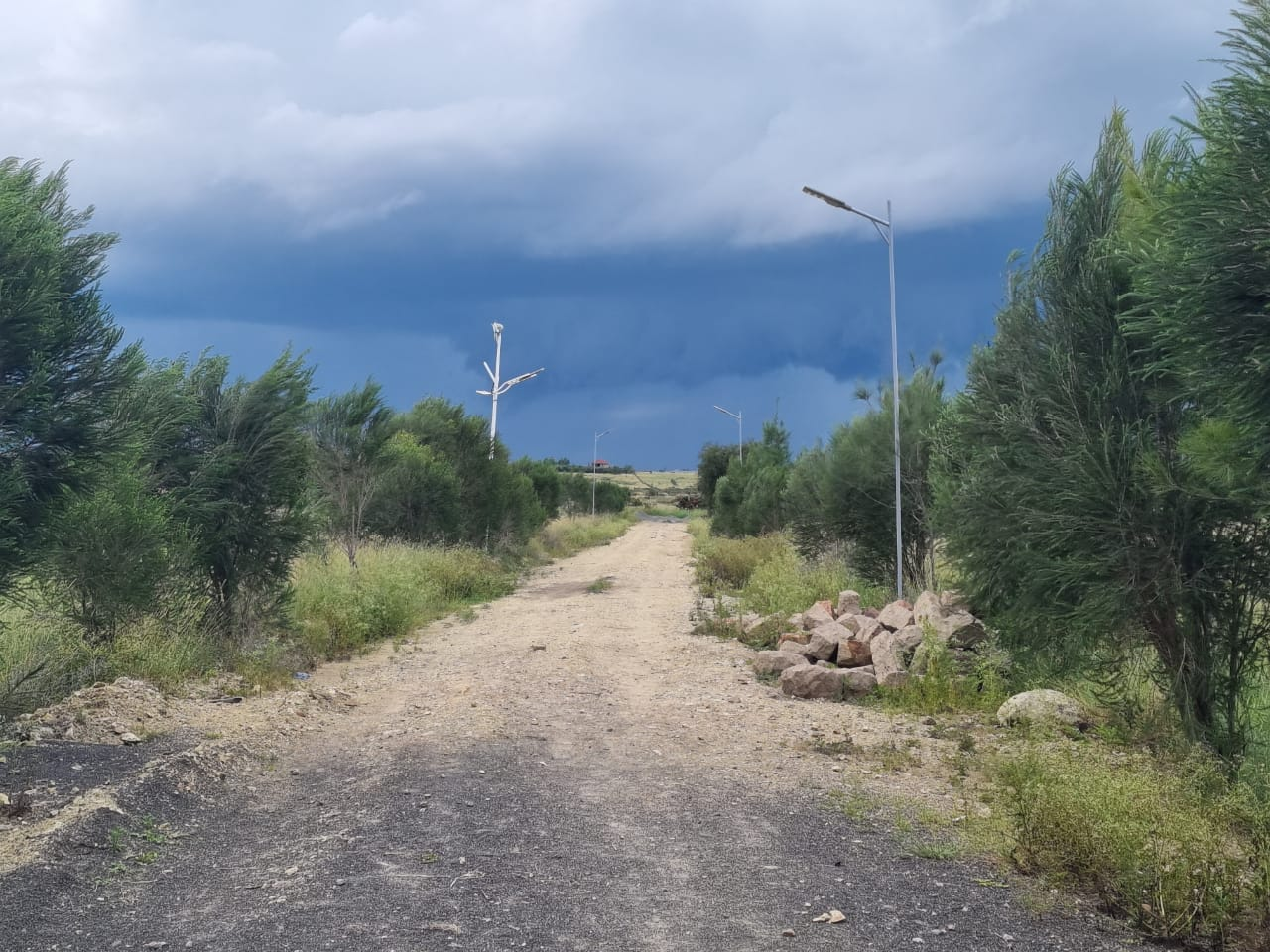 RESIDENTIAL SERVICED 1/8th Acre PLOTS FOR SALE-KITENGELA